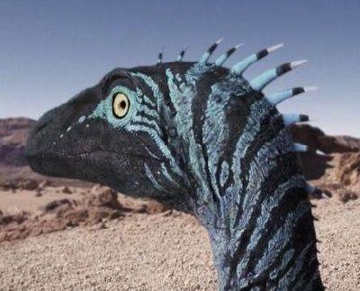 animales-que-han-evolucionado