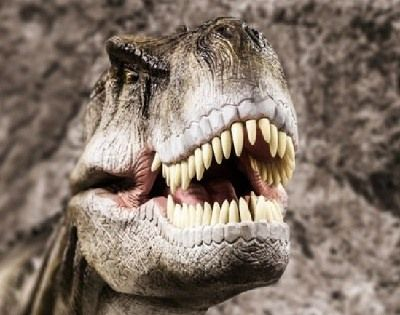 como se reproducian los dinosaurios