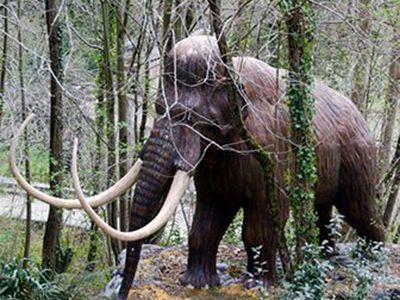 que comen los mamuts